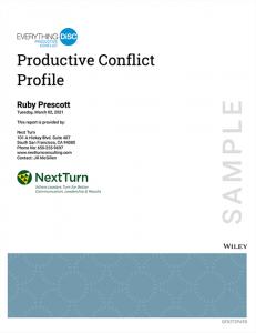 Productive Conflict Sample Profile