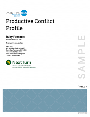 productive-conflict-sample-profile