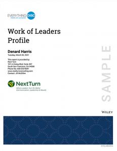 Work of Leaders Sample Profile