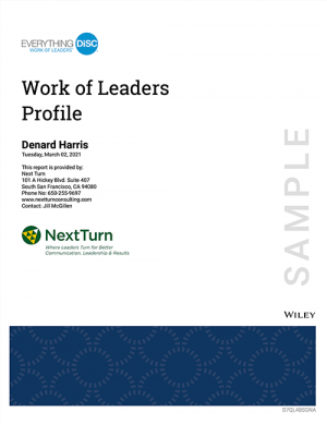 work-of-leaders-sample-profile